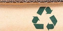 papier ecologique